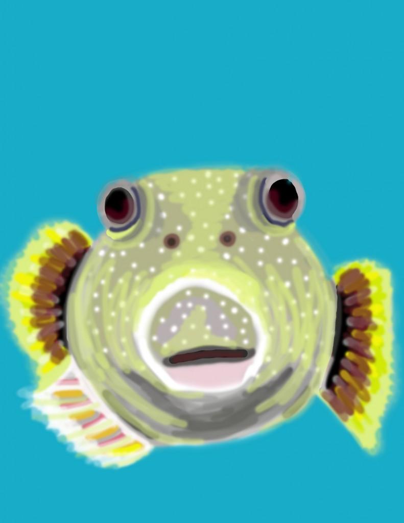 MBfishy